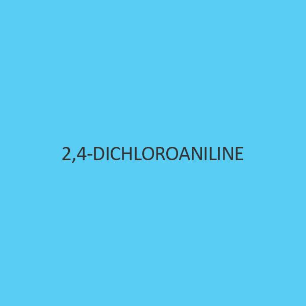 2 4 Dichloroaniline