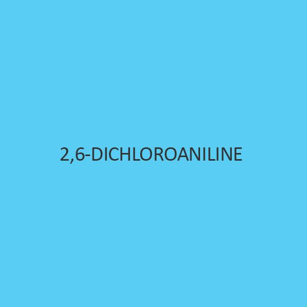 2 6 Dichloroaniline