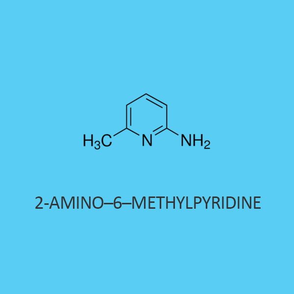 2 Amino 6 Methylpyridine