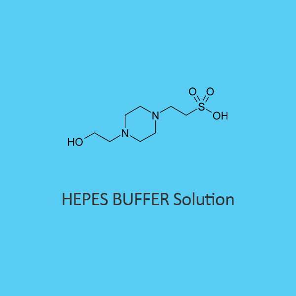 Hepes Buffer Solution