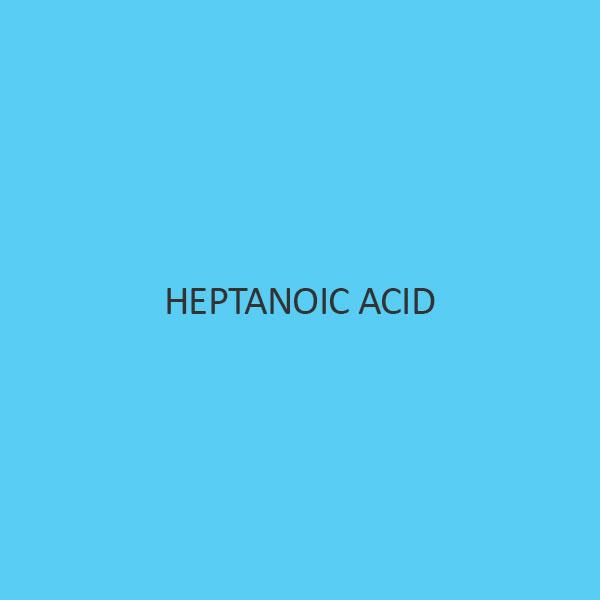 Heptanoic Acid (Enanthic Acid)