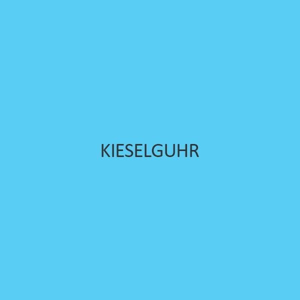 Kieselguhr (Purified White)