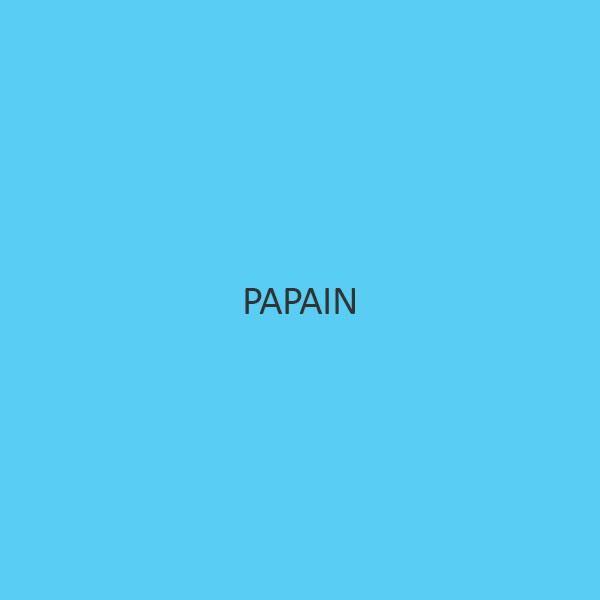 Papain (Purified Powder)