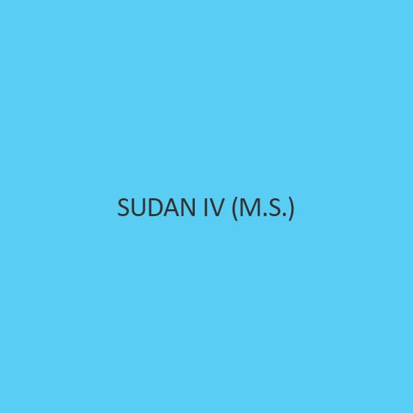 Sudan IV (M.S.)