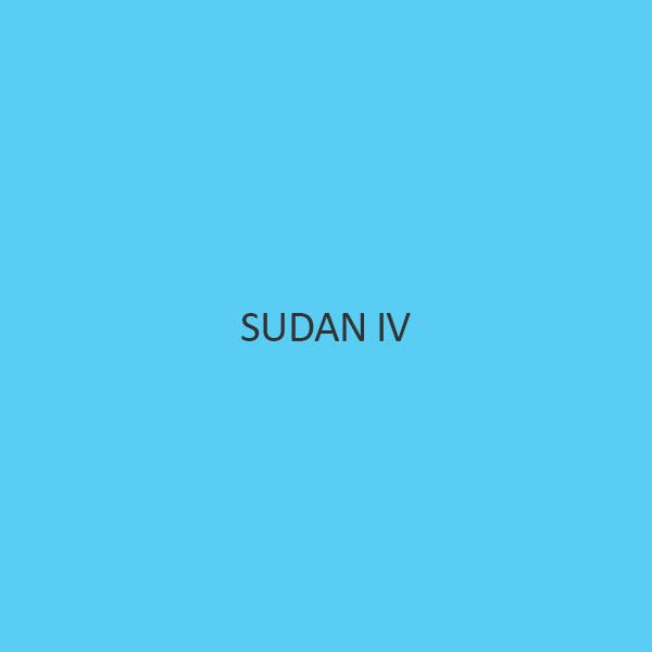 Sudan IV
