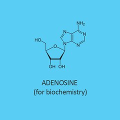 Adenosine for biochemistry