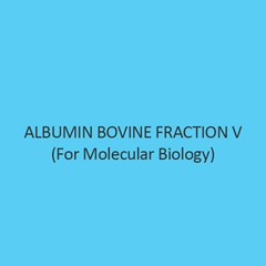 Albumin Bovine Fraction V For Molecular Biology