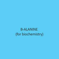 B Alanine For Biochemistry