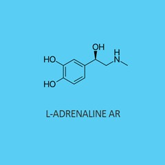 L Adrenaline AR