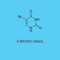 5 Bromo Uracil