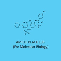 Amido Black 10B For Molecular Biology