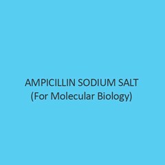 Ampicillin Sodium Salt For Molecular Biology