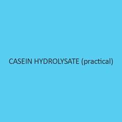 Casein Hydrolysate Practical