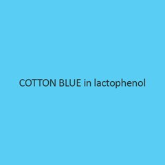 Cotton Blue In Lactophenol