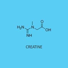 Creatine (monohydrate)