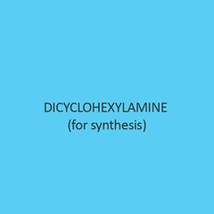 Dicyclohexylamine (For Synthesis)