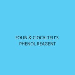 Folin & Ciocalteu'S Phenol Reagent
