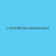 L Leucine (For Biochemistry)