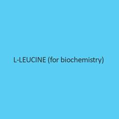 L Leucine (For Biochemistry)