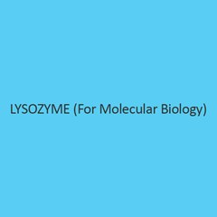 Lysozyme (For Molecular Biology)