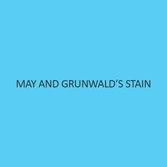 May And Grunwald's Stain