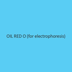 Oil Red O (For Electrophoresis)