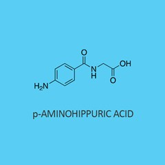 p Aminohippuric Acid