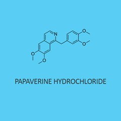 Papaverine Hydrochloride (For Lab Use)