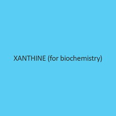 Xanthine (for biochemistry)